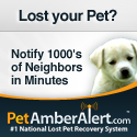 Lost Pet FInder