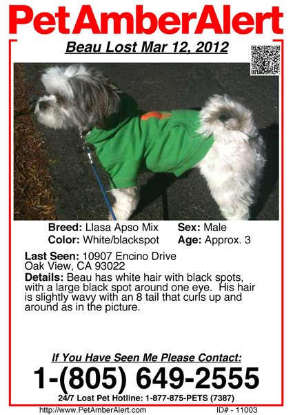 View Sample Poster Alert  Lost Pet Poster