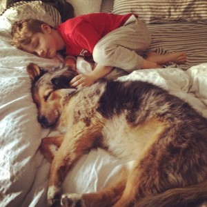 Sparky was lost for 10 days and later recovered by some creative and expensive means. He's sleeping here with one of his owners, 7-year-old Hank.