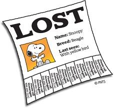 lostapet